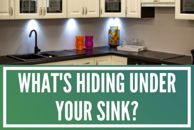 What's Hiding Under Your Sink?